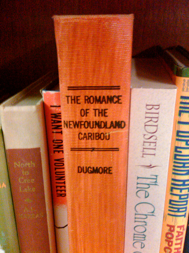 Romance Novel - Charlene Vickers